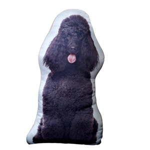 Polštářek s potiskem černého Pudla AdorableCushions
