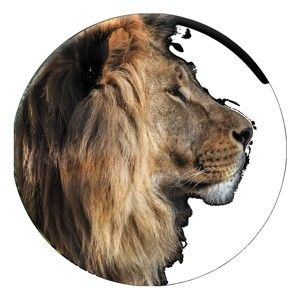 Nástěnná dekorace Styler Ring Lion, ø70cm