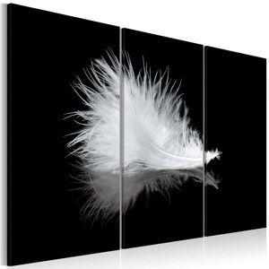Vícedílný obraz na plátně Artgeist Feather, 120 x 80 cm