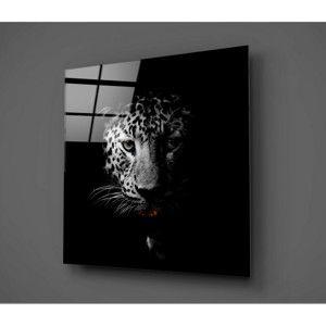 Skleněný obraz Insigne Wild Animal I, 30x30cm