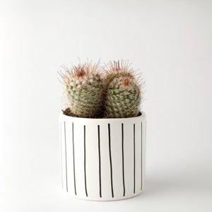 Květináč FOR.REST Design Strips,11cm