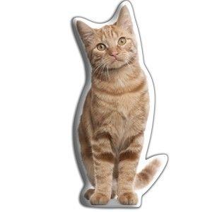 Polštářek s potiskem zrzavé kočky AdorableCushions